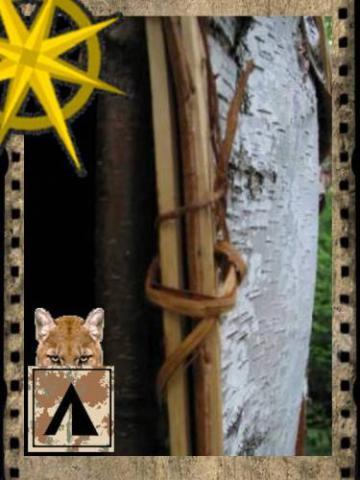 Крепления к входной арке. Практика строительства в лесу